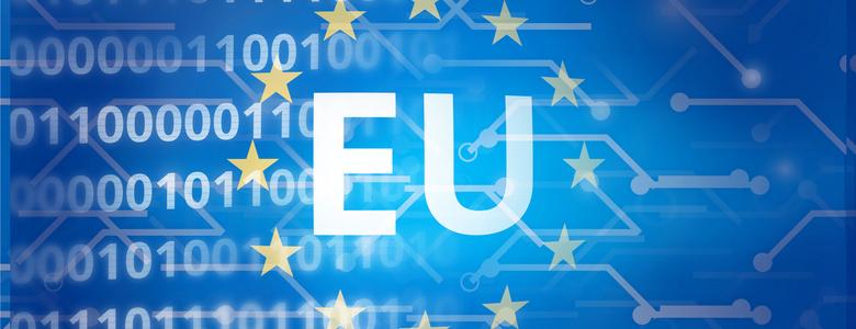 GDPR Regolamento Europeo sulla Privacy 679/2016 art.73