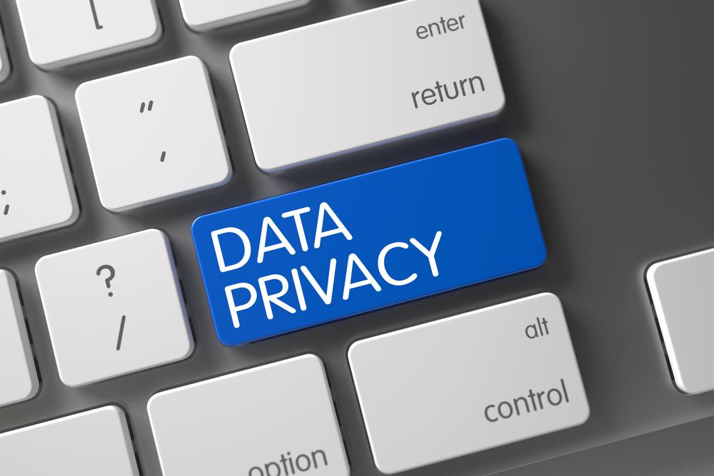 GDPR Regolamento Europeo sulla Privacy 679/2016 art.22